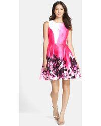 Kaya & Sloane - Kayla & Sloane Floral Print Fit & Flare Dress - Lyst
