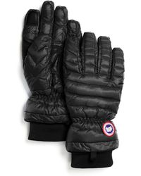Canada Goose official - Canada goose Women's Arctic Down Gloves in Black | Lyst