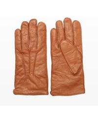 Club Monaco Washed Leather Glove - Brown
