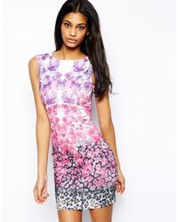 Lipsy Body Conscious Dress in Ombre Animal and Floral Print - Lyst