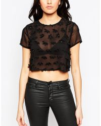Madam Rage - Sheer Top With Floral Applique - Lyst