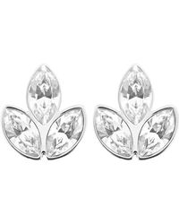 Swarovski Azalea Crystal Cluster Earrings - Lyst