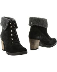 Roccobarocco Ankle Boots - Lyst