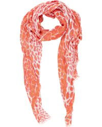 Barneys New York Leopardprint Gauzy Scarf - Lyst