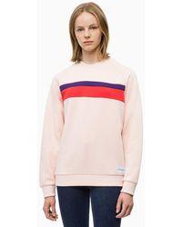 Calvin Klein Sweat-shirt pans rays - Rose