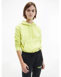 Calvin Klein Hoodie Van Biologisch Katoen Met Logo Op Rug - Meerkleurig