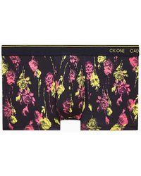 Calvin Klein B�xer de tiro bajo - CK One - Multicolor