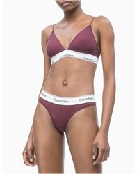 Calvin Klein Modern Cotton Bikini Bottom - Purple