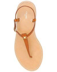 Celine Triomphe Thong Flat Sandals - Multicolor