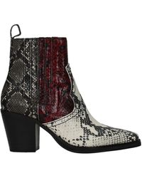Steve Madden Ankle Boots Eco Leather Burgundy - Grey