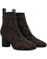 Ferragamo Ankle Boots Fabric - Brown