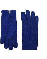 Alexander McQueen Gloves - Blue