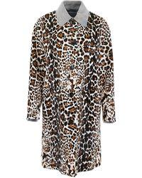 Bottega Veneta Leopard-printed Coat - Black