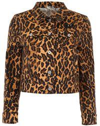 Miu Miu Leopard-printed Denim Jacket - Brown