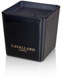 Cavallaro Napoli Cavallaro La Fragranza - Zwart