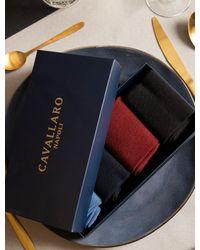 Cavallaro Napoli Heren Ondershirts - Socks 4-pack - Multi Colour - Blauw