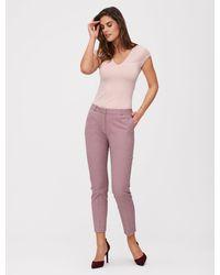 Cavallaro Napoli Women Broek - Tula Pants - Rood - 97% Katoen 3% Elastaan