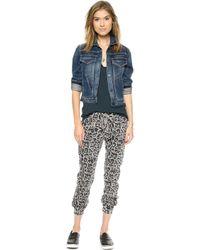 Pam & Gela Long Rise Sweatpants  Pigment Grey Leopard - Lyst