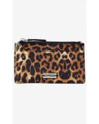 Express Leopard Credit Card Holder - Multicolour