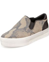 Ash Jungle Snake-print Slip-on Sneaker - Lyst