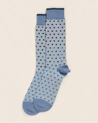 Ted Baker Allover Spot Socks - Blue