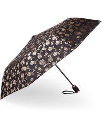 Bebe Auto Open Metallic Rose Umbrella - Multicolor