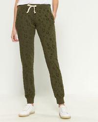 Sweet Romeo Velvet Leopard Spot Sweatpants - Green