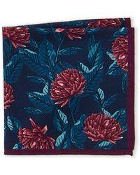 Ted Baker Floral Pocket Square - Blue