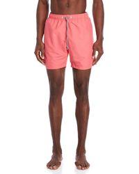 Boardies - Coral Solid Board Shorts - Lyst