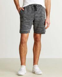 Buffalo David Bitton Knit Shorts - Gray