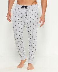 U.S. POLO ASSN. Pony Knit Jogger Sweatpants - Gray