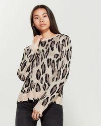 Fate Distressed Leopard Print Sweater - Black