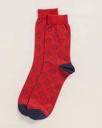 Thomas Pink Sanna Dot Print Socks - Red