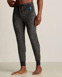 U.S. POLO ASSN. Plush Logo Jogger Sweatpants - Gray