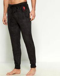 U.S. POLO ASSN. Plush Logo Jogger Sweatpants - Black
