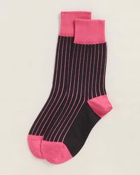 Thomas Pink Tenby Stripe Print Socks - Pink