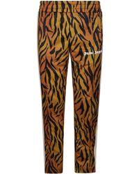 Palm Angels - Tiger Side Stripe Track Pants - Lyst