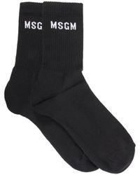 MSGM Socks With Micro Logo - Black
