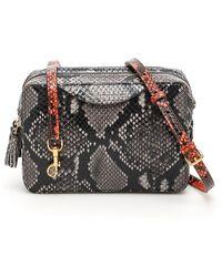 Anya Hindmarch Python Print Crossbody Bag