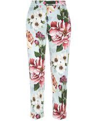 Dolce & Gabbana Printed Gabardine Pant - Multicolour