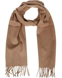 Max Mara Logo Embroidered Fringed Scarf - Brown