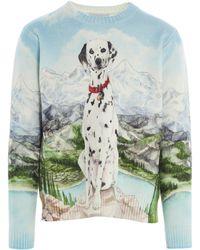 CASABLANCA Dalmatian Print Sweater - Multicolor