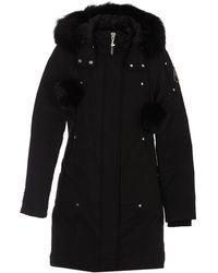 Moose Knuckles Stirling Parka Coat - Black