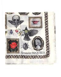 Alexander McQueen Cameo And Curiosities Maxi Scarf - White