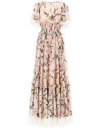 Dolce & Gabbana Lily Print Belted Dress - Pink