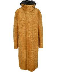 Bottega Veneta Teddy Coat - Yellow