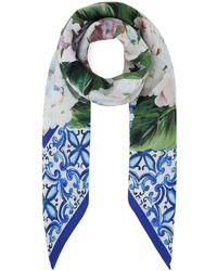 Dolce & Gabbana Hydrangea Print Twill Scarf - Blue