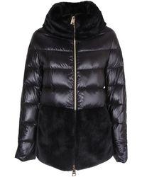 Herno Zipped Down Jacket - Black