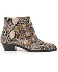 Chloé Susanna Studded Snake-effect Leather Ankle Boots - Brown