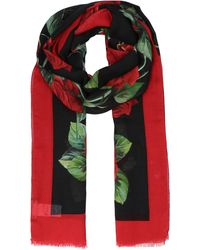 Dolce & Gabbana Floral Printed Frayed Scarf - Multicolour